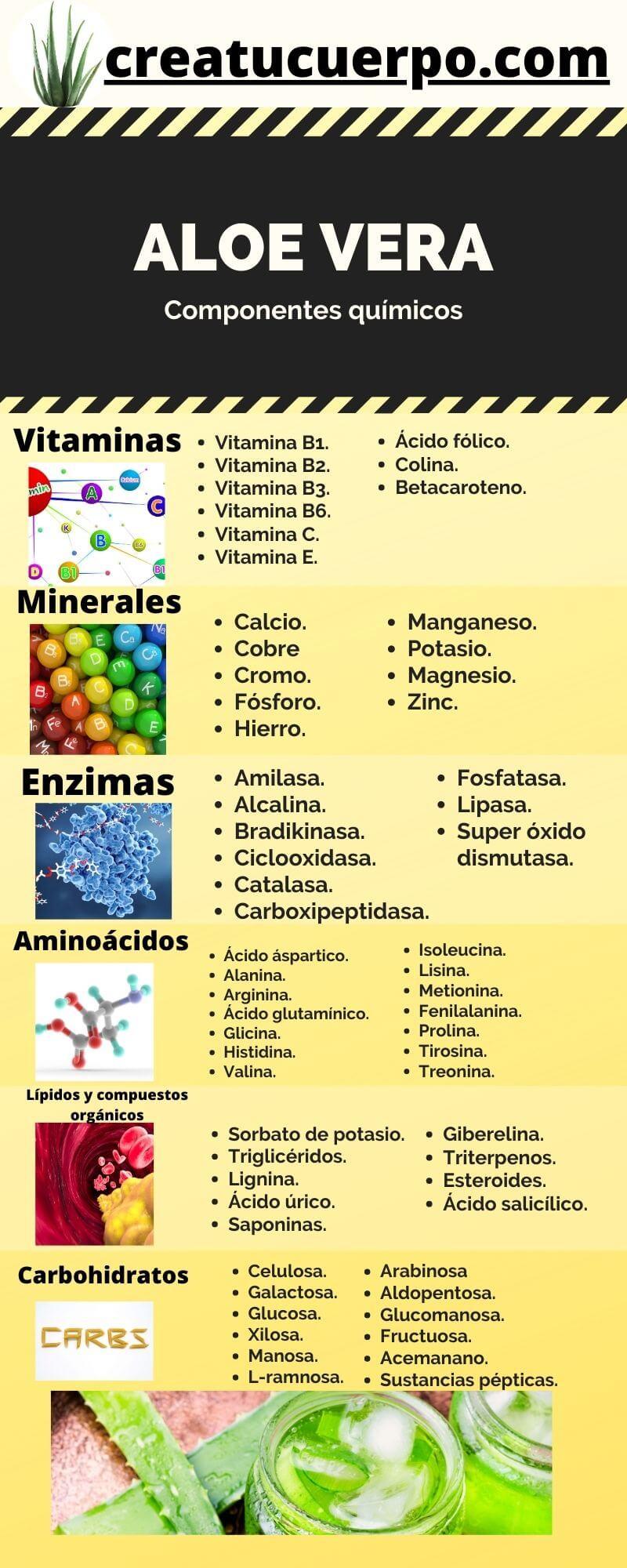 Infografía de los componentes del aloe vera