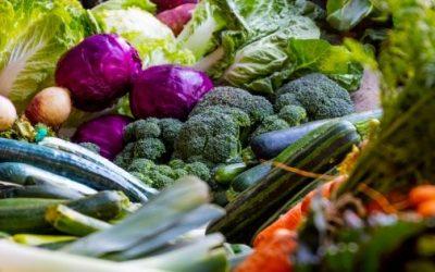 ¿Cómo empezar a ser vegano? Los 9 consejos que cambiarán tu vida