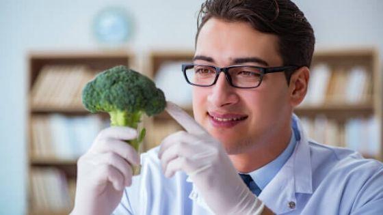 Los 22 mejores alimentos según la ciencia