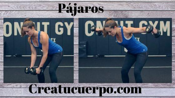 Pajaros, ejercicios Fitness