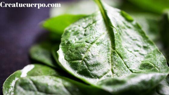 Las verduras de hoja verde tienen mucho hierro