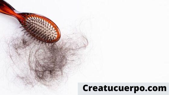 Elige un cepillo idóneo para evitar la caída del pelo