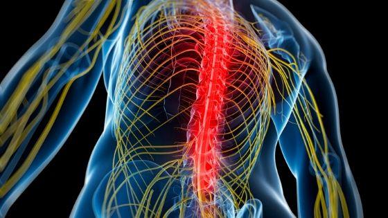 ¿Qué es el dolor y cuáles sos los tipos de dolor que hay?