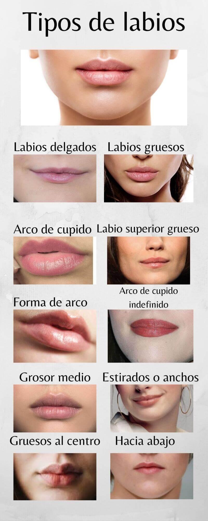 Infografía explicativa de las todas las formas de labios