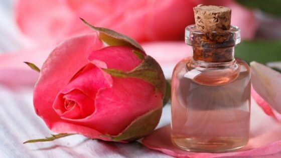 Todo sobre el agua de rosas